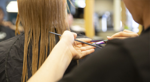 Cosmetology & Barbering